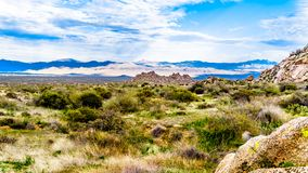 View of the rugged rocky mountains in the McDowell Mountain Range. Around Phoenix, Arizona viewed from the Tom`s Thumb Trail stock photo