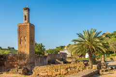 View at the ruins of Chellah mosque with old minaret in Rabat royalty free stock images