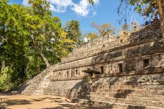 View at the ruins of Royal Palace in Copan - Honduras royalty free stock images