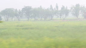 View on rural landscape in Jodhpur from a moving train. stock video footage