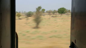View on rural landscape in Jodhpur from train door during ride. stock video