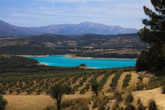 View on rural valley with olive groves, crop fields and  blue artificial lake Bermejales with mountain range in horizon stock image