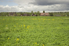 View of the Russian village. Green meadow. Summer Royalty Free Stock Image