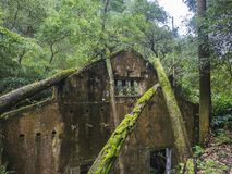 View on rusty ruins of old 19th century abandoned factory Fabrica da Cidade and Fabrica da Vila, lost in forest with. Moss and ferns on hiking trail Quatro royalty free stock images