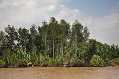 View of Saigon river. Vietnam Stock Photography