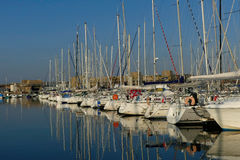 View of sailing boats moored in raw at the marina of Lorient, Brittany, France. Royalty Free Stock Photo