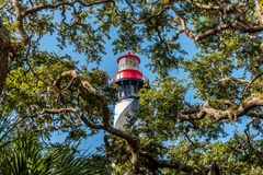 View of Saint Augustine Lighthouse behind trees at Anastasia Island in Florida. Picture of Saint Augustine Lighthouse behind trees at Anastasia Island in Florida royalty free stock photo