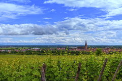 View on Saint-Hyppolyte and vineyard, Alsace, France Stock Image