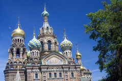 View of Saint-Petersburg city, Russia. Church of Savior on Spilled Blood. Stock Images
