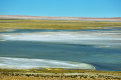 View of Salar de Tara Royalty Free Stock Photos