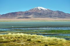 View of Salar de Tara Stock Image