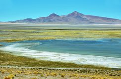 View of Salar de Tara Royalty Free Stock Photography