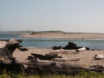 View of Salishan Spit. Long distance view of seal colony on north end of Salishan Spit with driftwood on beach in the foreground. Image taken near Mos Restaurant royalty free stock photography