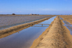 View of Salt evaporation ponds in Secovlje Royalty Free Stock Photography