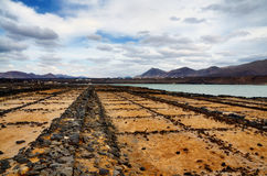 Salt pans Stock Images