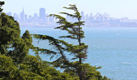 View of San Francisco from Belvedere Island Stock Photos