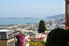 View of San Francisco from Russian Hill. Stunning view from Russian Hill, San Francisco (California) in a sunny day Royalty Free Stock Images