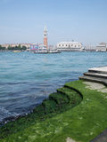 View on San Marco. View on Saint Mark's square in Venice from the island of San Giorgio Maggiore stock image