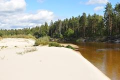 The view of the sand bank of the forest river against blue bright sky with clouds. The view of the sand bank of the forest river with pines against the blue sky stock photography