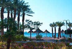 View on sand beach in Eilat city, Israel Royalty Free Stock Image