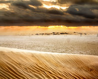 View of sand dunes and dunes in the Sahara desert at sunset Stock Photography