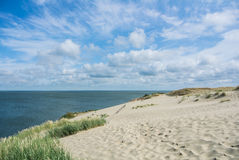 A view of the sand dunes with grass. A view of the sand dunes with grass and a fence at Nida, Lithuania Stock Image
