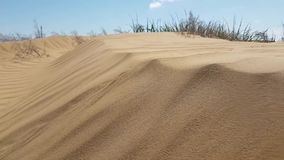 View on sand dunes surface stock video