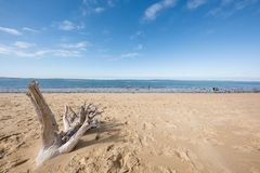 The beach of the dune of Pilat on the Arcachon Bay, France. View on the sandbank of Arguin from the beach of the dune of Pilat, or Pyla, in France, on the Royalty Free Stock Photos