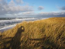 View from the sanddunes to the coast of hoernum in sylt Stock Photography