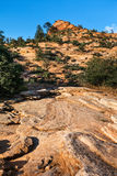 View on the sandstone hill, Utah Stock Image