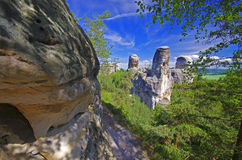View of sandstone rockies and wood in cesky raj, bohemia Stock Photos