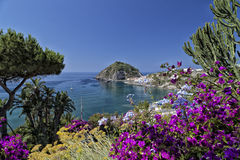 View of SantAngelo in Ischia Island Royalty Free Stock Photography