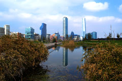A view of Santiago city in Chile. A view of Santiago with a reflection on a lake Royalty Free Stock Photo