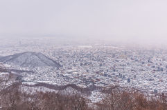 View of Sapporo city in winter Royalty Free Stock Photo