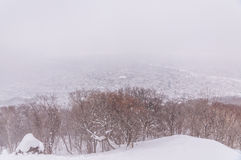 View of Sapporo city in winter Royalty Free Stock Images