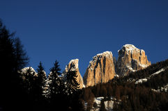 View of the Sassolungo (Langkofel) Group of the Italian Dolomites Royalty Free Stock Photos