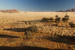 View of the savanna. Africa. Namibia. Stock Photo