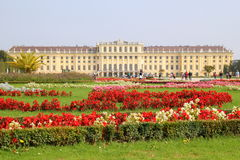 The view on the Schonbrunn Palace and park in front of him with red and white flowers in the sunny day. Royalty Free Stock Photo