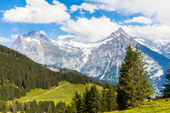 View of Schreckhorn, swiss alps Royalty Free Stock Photos