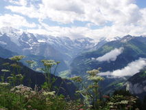 View from Schynigge Platte Switzerland Royalty Free Stock Photo