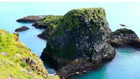 View of sea bird flying at the basalt rock formation. At the coastline of Arnarstapi Village in Iceland stock video