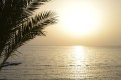 View of the sea at dawn. Sea sun sunrise palms pier Royalty Free Stock Photo