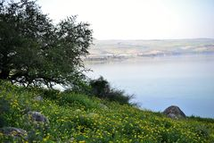 View of the sea of Galilee Kinneret lake from Mt. Arbel mountain, beautiful lake landscape, Israel, Tiberias royalty free stock image