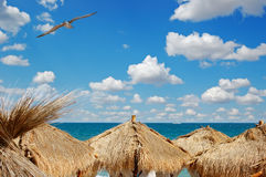 View of sea over the palm leaves roofs Royalty Free Stock Image