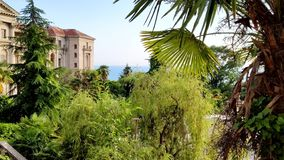 View of the sea and the park from the terrace of the palace royalty free stock photos