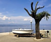 A view of a sea pier with a wierd tree and a boat on a trailer o royalty free stock image