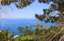 View of the sea  through the pines in Monterosso, Cinque Terre, Stock Photos