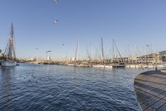 View of the sea in the port of barcelona with boats and palm trees stock image