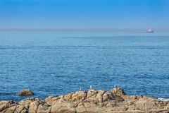 View at the sea and rocks with seagulls, boat on atlantic ocean and sky as background royalty free stock photography
