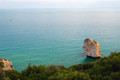 View of sea and rocky wooded coast Royalty Free Stock Images